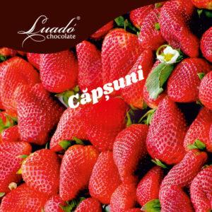 Sorbet artizanal de căpșuni
