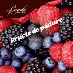 Sorbet artizanal de fructe de pădure