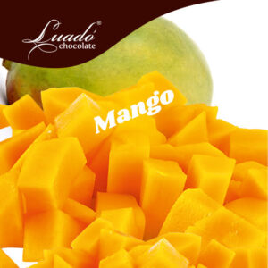 Sorbet artizanal de mango